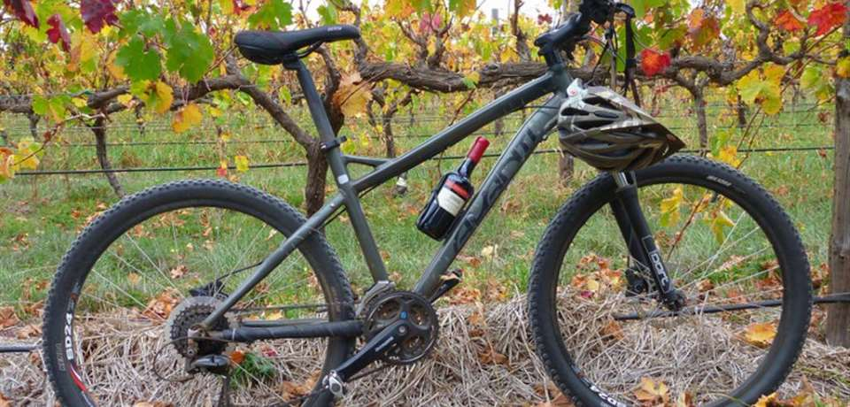 Escapegoat Adventures - Vines And Wines by Mountain Bike - N1