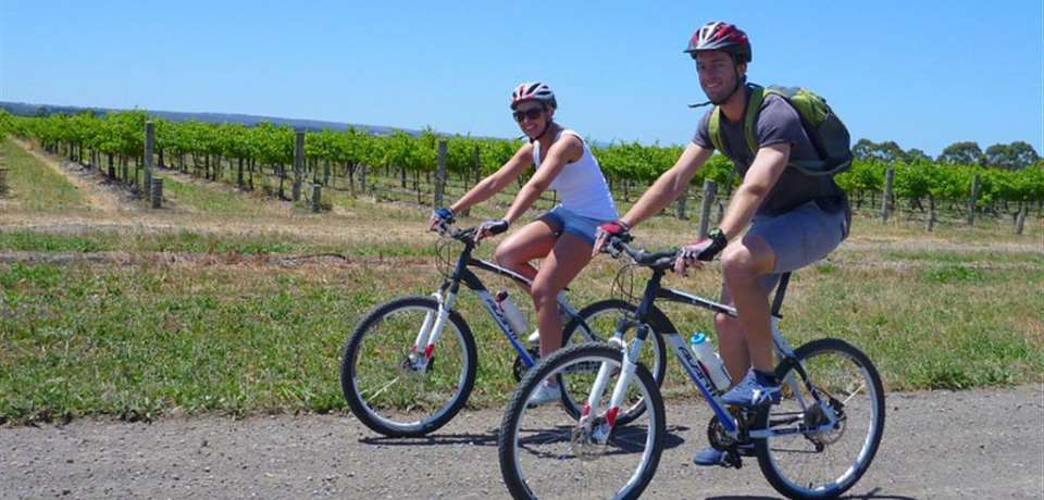 Escapegoat Adventures - Vines And Wines by Mountain Bike - N4