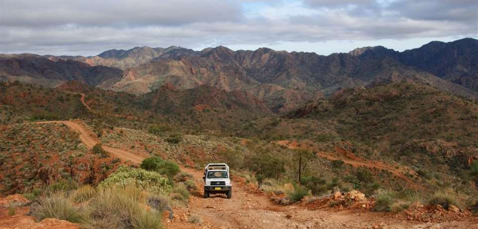 Arkaroola Wilderness Sanctuary - N11