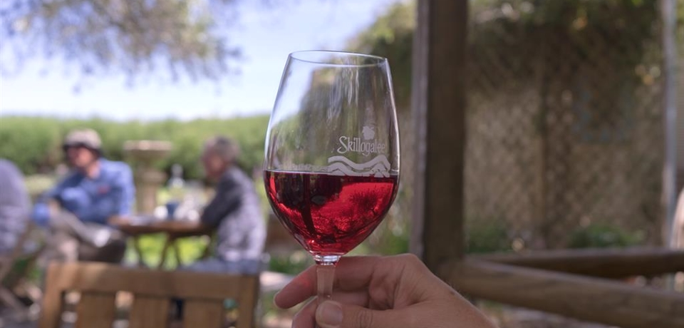 Clare Valley Tours - Clare UnCorked - 5