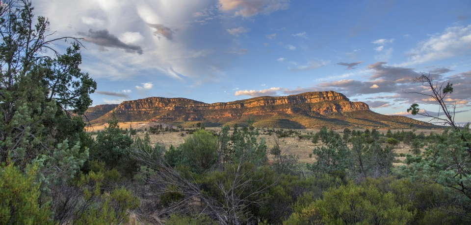Rawnsley Park Station - Flinders Ranges - 6