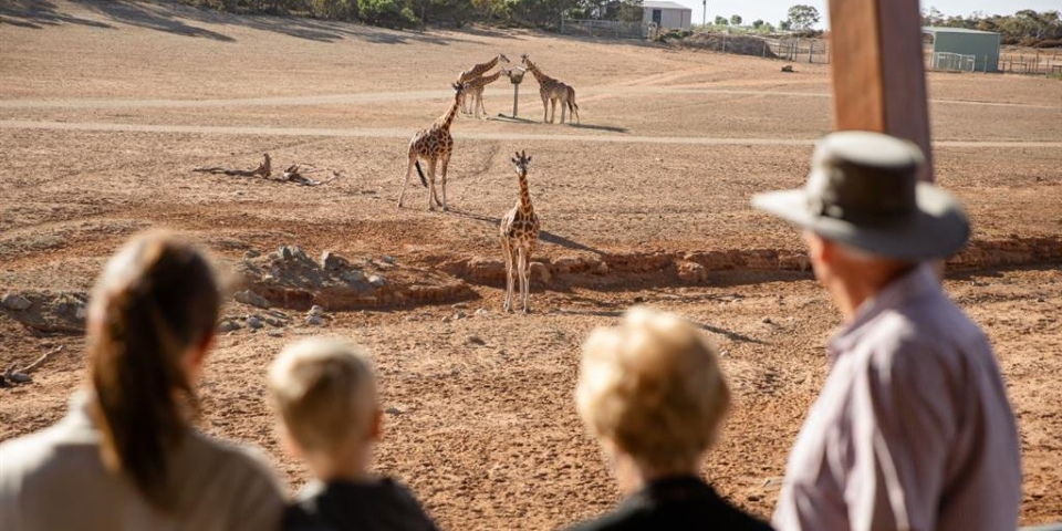WINTER SPECIAL - Monarto Safari Park - General Admission - 1