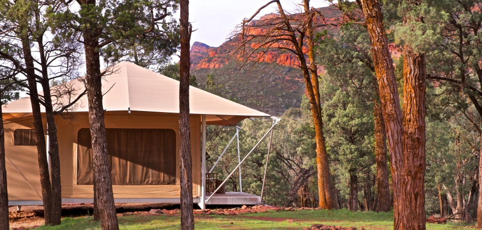 Wilpena Pound Resort - Flinders Ranges - WR1