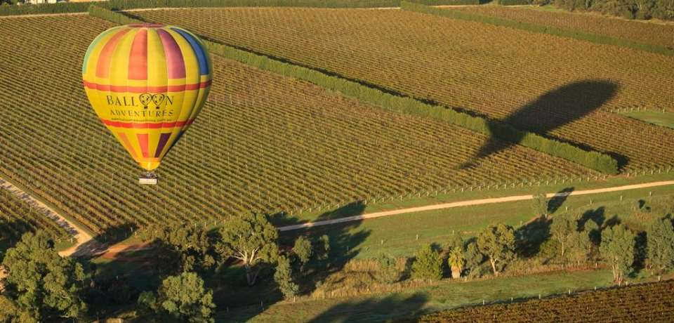 Barossa Balloon Adventures - 1 Hour Sunrise Balloon Flight - N3